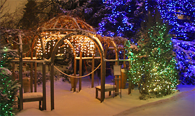 The Denver Botanic Gardens This Holiday Season Is Transformed Into A Winter  Wonderland Of One Million Colorful Lights At The 19th Annual Blossoms Of  Light.